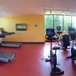 Panoramic view of the fitness room, each piece of equipment placed in line of sight of the outdoors