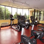 Exercise equipment staring towards a long window pane